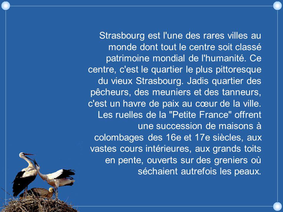 Foie gras et choucroute sont les deux fleurons des restaurants strasbourgeois.