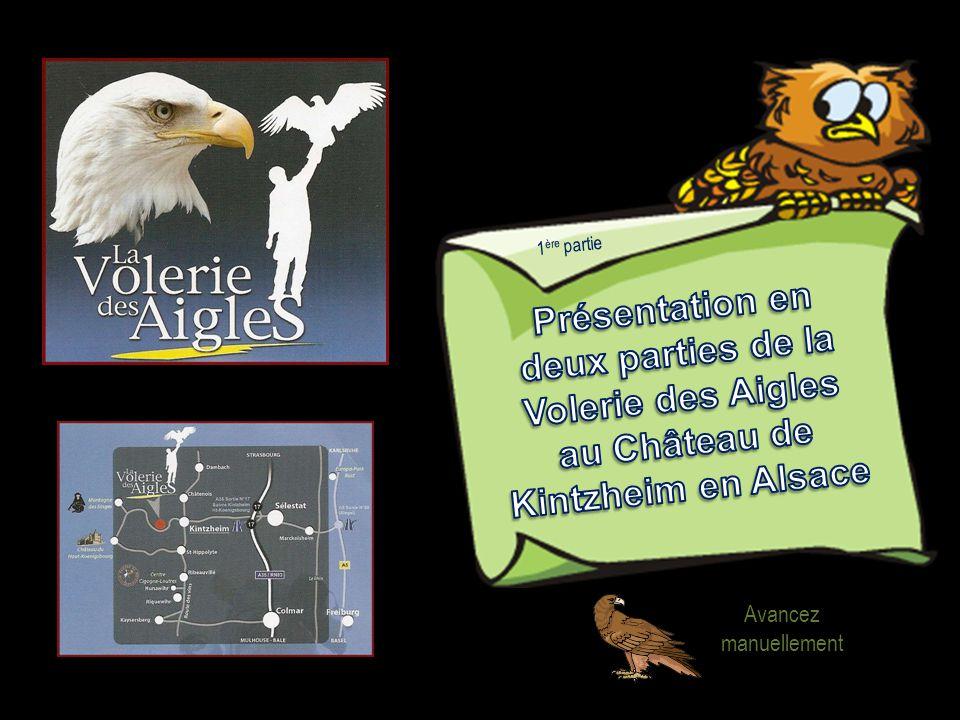 Aigle Ravisseur : 1) 1,7 - 3,1 kg 2) 30 ans 3) 170 - 190 cm