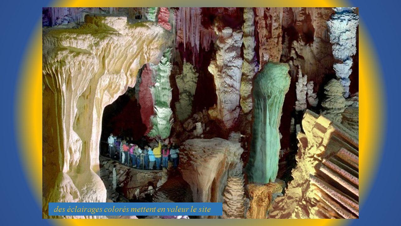 Petit Historique : Laven, spectaculaire abîme au cœur de la forêt En 1965 un groupe de spéléologues de Nîmes sy aventurent pour la 1ére fois ils bapti