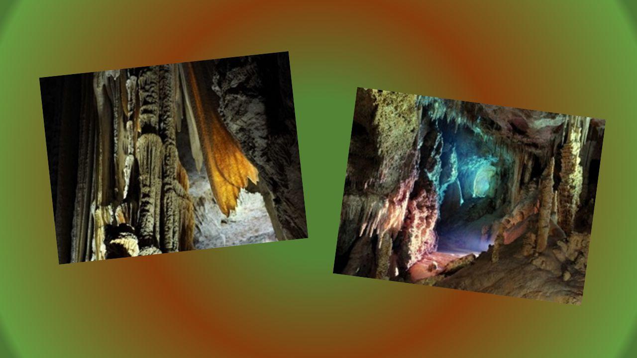 Descente en rappel une autre façon de visiter le cœur de la grotte par groupe de 4 personnes réservation souhaitée. INOUBLIABLE depuis lentrée naturel