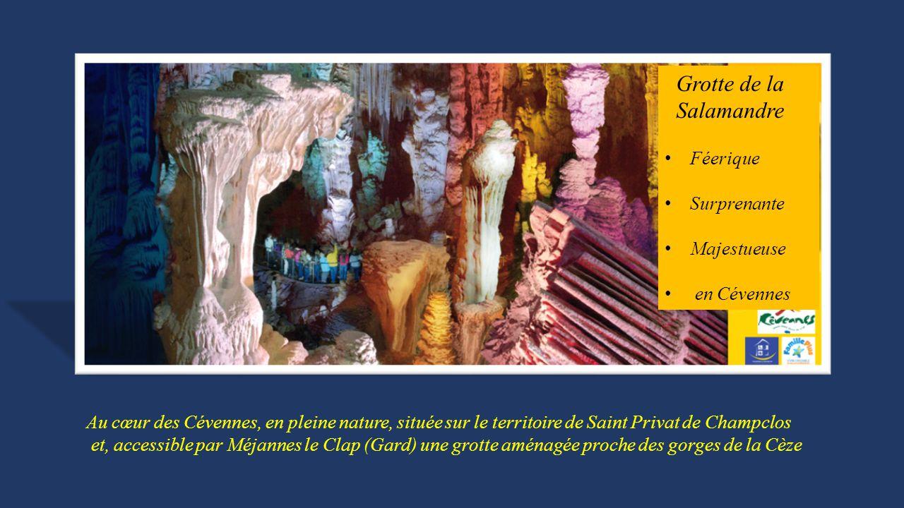 Au cœur des Cévennes, en pleine nature, située sur le territoire de Saint Privat de Champclos et, accessible par Méjannes le Clap (Gard) une grotte aménagée proche des gorges de la Cèze Grotte de la Salamandre Féerique Surprenante Majestueuse en Cévennes