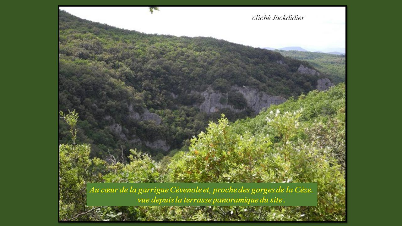 Au cœur de la garrigue Cévenole et, proche des gorges de la Cèze.