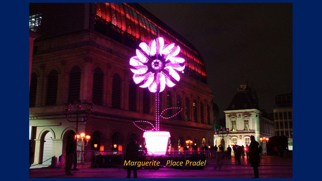 Sérénade Place de la Bourse
