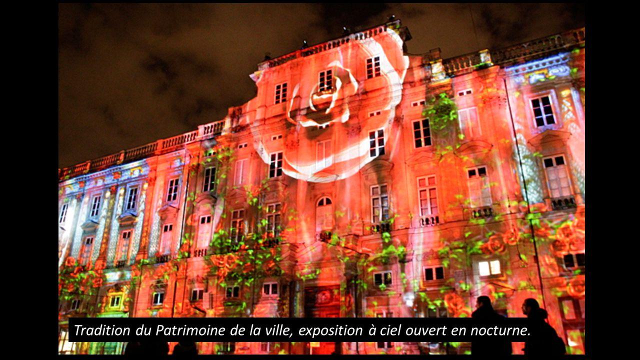 Fête des Lumières de Lyon Proposé par Jackdidier avec clichés du net.