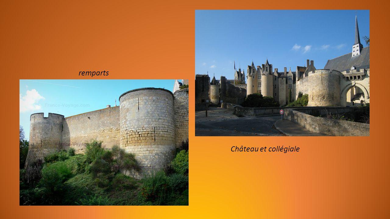 Le Château datant de 1025, remparts fortifiés et douves, caves voûtées.
