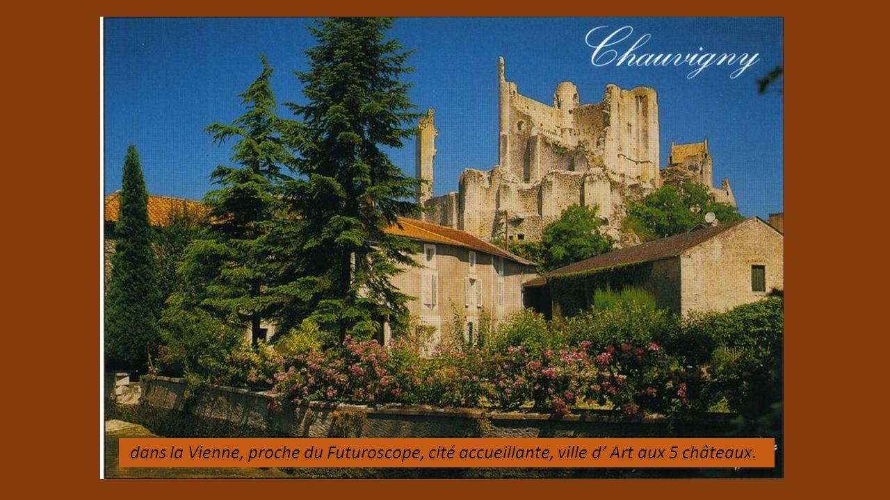 Vestiges du château (Tour de Boulaye 11éme) et maisons à pans de bois, complètent la beauté de cette localité vendéenne, joli détour.