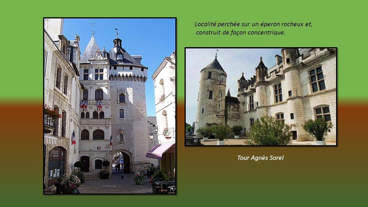 LOCHES en Indre et Loire Proche des Châteaux et des étangs de la Brenne. Ville dArt