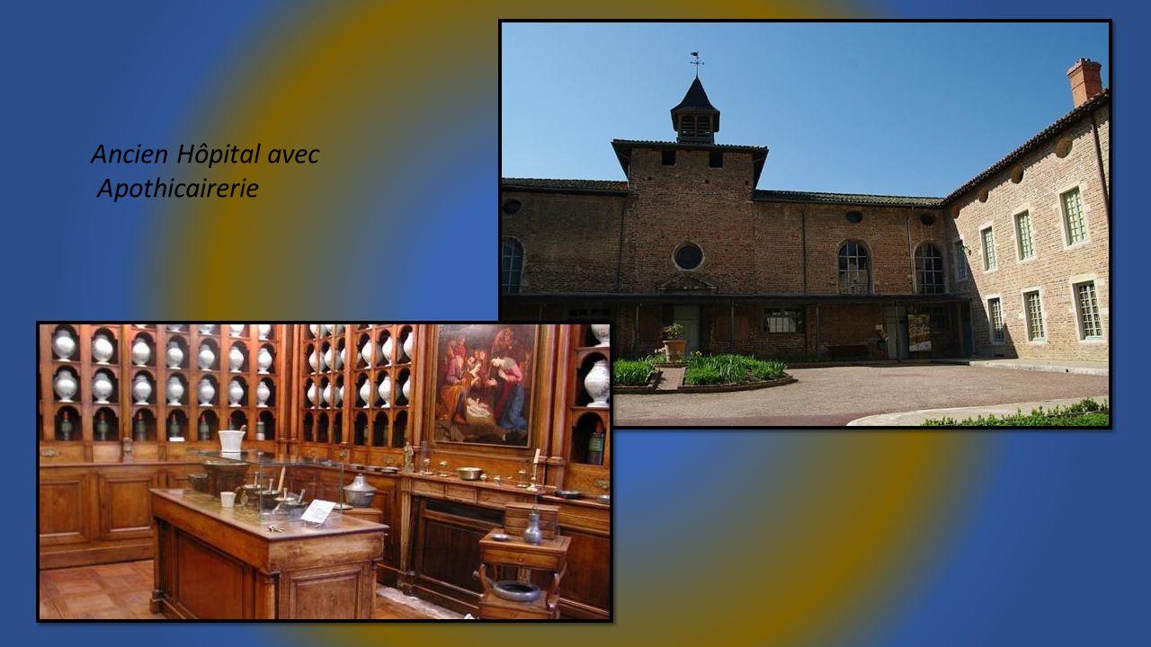 Halles du 15éme siècle Et remparts du château féodal