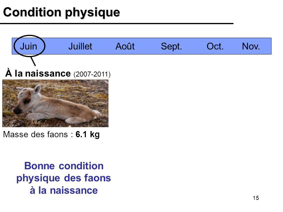 15 Condition physique À la naissance (2007-2011) Bonne condition physique des faons à la naissance Juin Juillet Août Sept. Oct. Nov. Masse des faons :