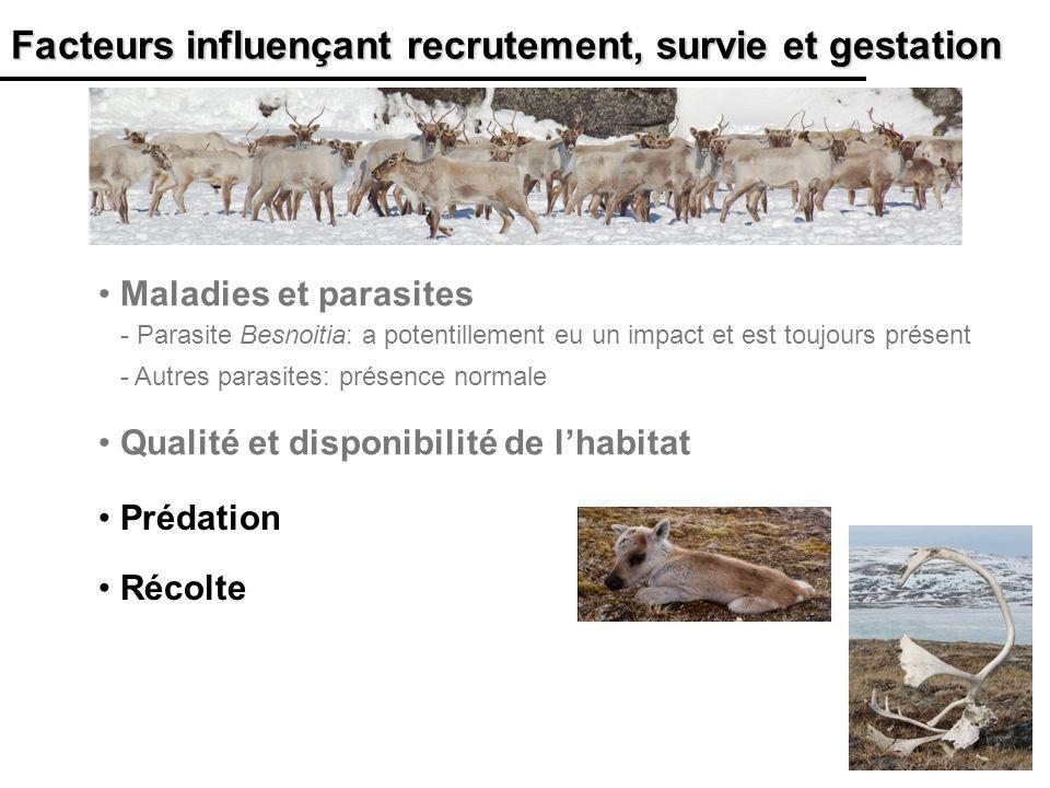 26 Facteurs influençant recrutement, survie et gestation Qualité et disponibilité de lhabitat Maladies et parasites - Parasite Besnoitia: a potentille