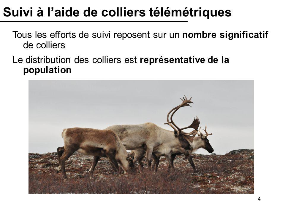 5 Inventaires aériens Il y a eu 9 suivis aériens du troupeau Rivière-George Depuis 1993, les inventaires mettent en évidence un déclin de près de 95% du troupeau Année Taille de population 74 000 ± 13 320 27 600 ± 2 760