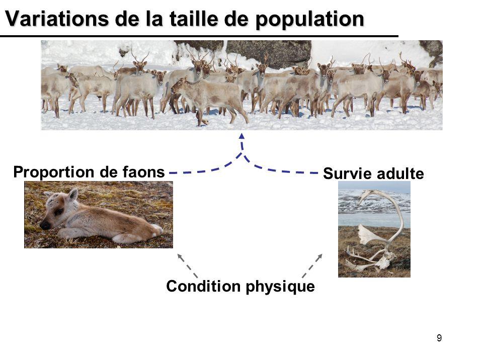 30 Taux de récolte du troupeau Rivière-George Le taux de récolte estimé est demeuré très élevé au cours des années récentes *La récolte par les autochtones du Labrador et du Québec est estimée et 20% est ajouté à la récolte totale pour tenir compte des pertes par blessure, braconnage et gaspillage.
