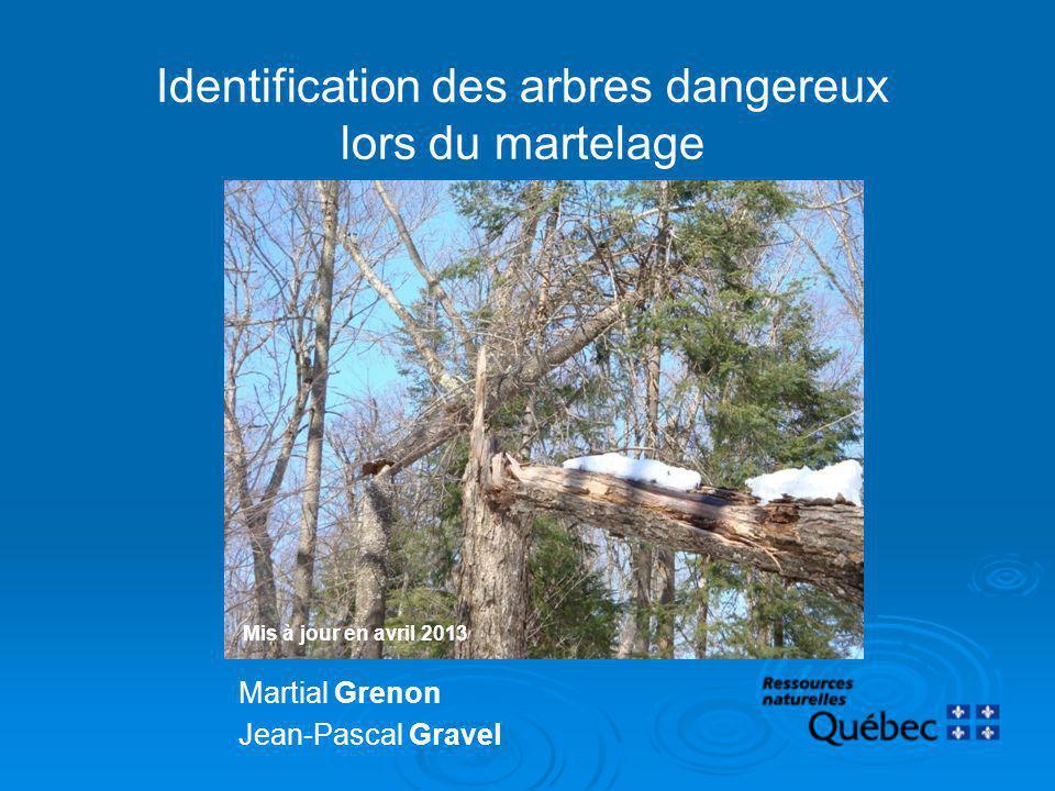 Identification des arbres dangereux lors du martelage Martial Grenon Jean-Pascal Gravel 1 Mis à jour en avril 2013