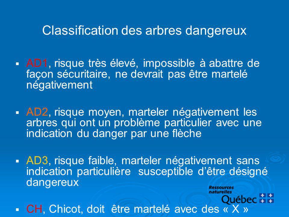 Classification des arbres dangereux AD1, risque très élevé, impossible à abattre de façon sécuritaire, ne devrait pas être martelé négativement AD2, r