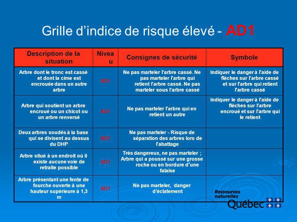 Grille dindice de risque élevé - AD1 Description de la situation Nivea u Consignes de sécuritéSymbole Arbre dont le tronc est cassé et dont la cime es