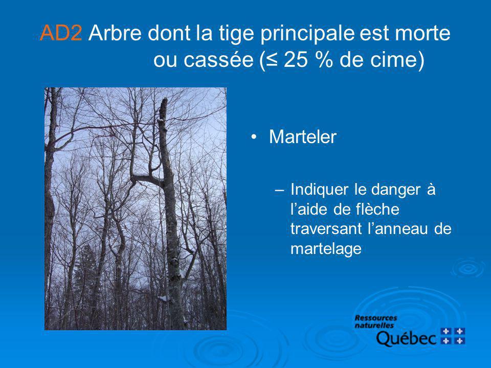 AD2 Arbre dont la tige principale est morte ou cassée ( 25 % de cime) Marteler –Indiquer le danger à laide de flèche traversant lanneau de martelage