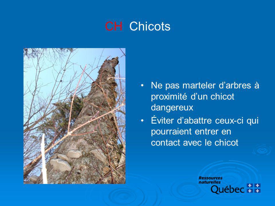 Ne pas marteler darbres à proximité dun chicot dangereux Éviter dabattre ceux-ci qui pourraient entrer en contact avec le chicot CH Chicots