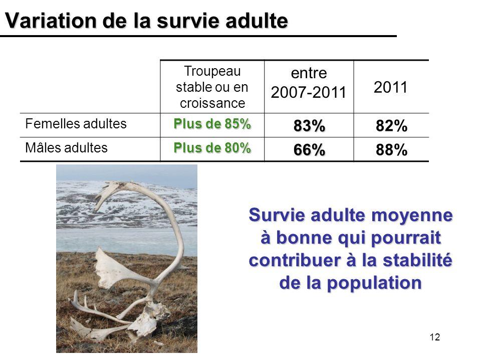 12 Variation de la survie adulte Troupeau stable ou en croissance entre 2007-2011 2011 Femelles adultes Plus de 85% 83%82% Mâles adultes Plus de 80% 66%88% Survie adulte moyenne à bonne qui pourrait contribuer à la stabilité de la population