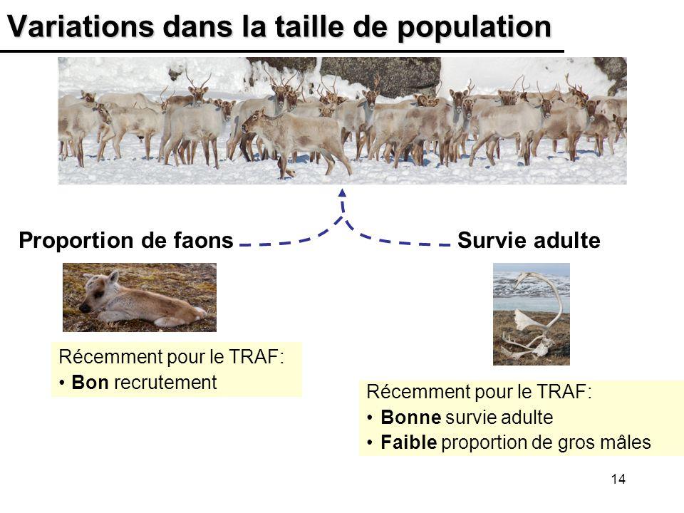 14 Variations dans la taille de population Récemment pour le TRAF: Bon recrutement Récemment pour le TRAF: Bonne survie adulte Faible proportion de gros mâles Proportion de faonsSurvie adulte