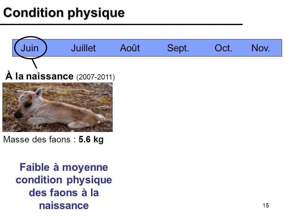 15 Condition physique À la naissance (2007-2011) Faible à moyenne condition physique des faons à la naissance Juin Juillet Août Sept.