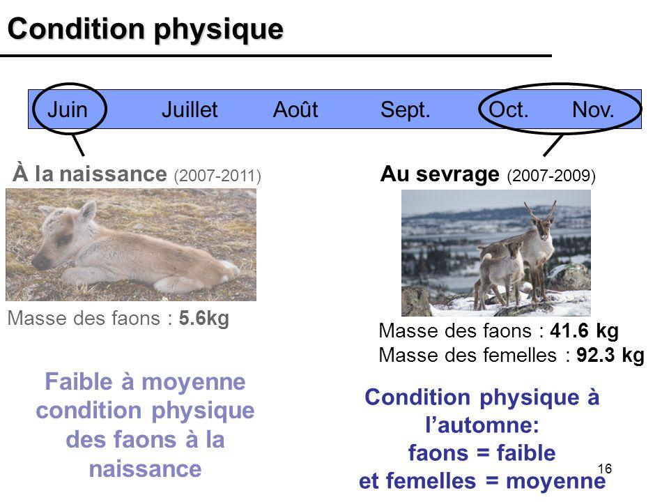 16 Condition physique À la naissance (2007-2011) Juin Juillet Août Sept. Oct. Nov. Au sevrage (2007-2009) Masse des faons : 41.6 kg Masse des femelles