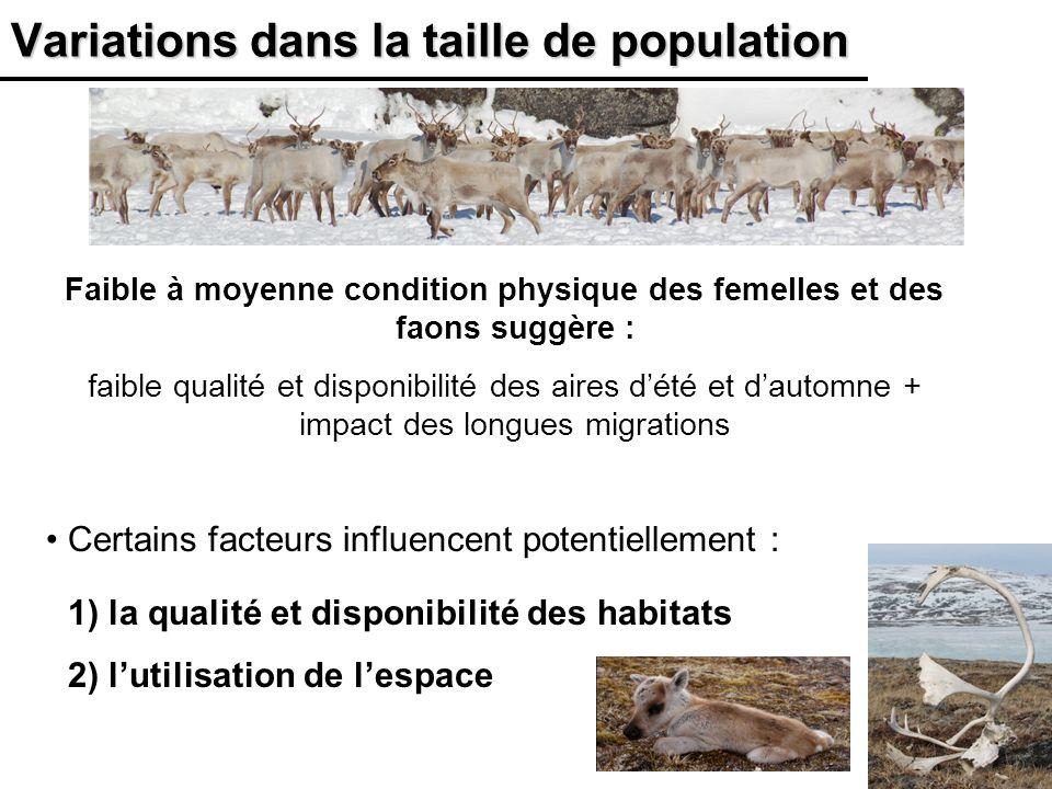 19 Variations dans la taille de population Faible à moyenne condition physique des femelles et des faons suggère : faible qualité et disponibilité des