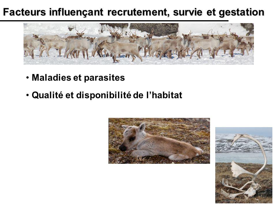 20 Facteurs influençant recrutement, survie et gestation Qualité et disponibilité de lhabitat Maladies et parasites