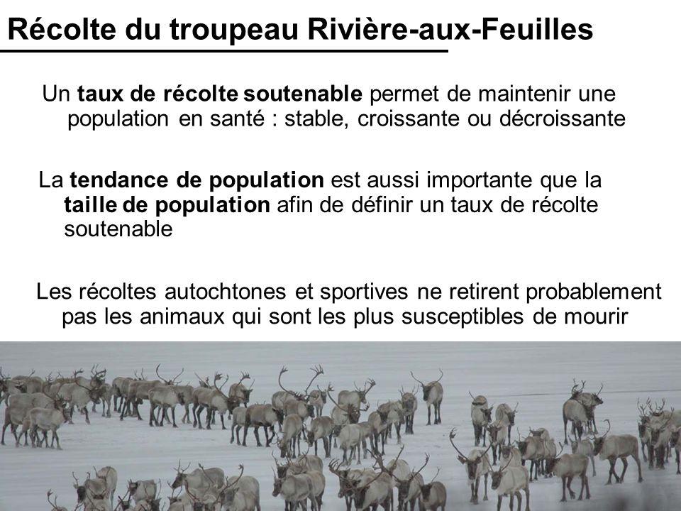 28 Récolte du troupeau Rivière-aux-Feuilles Un taux de récolte soutenable permet de maintenir une population en santé : stable, croissante ou décroiss