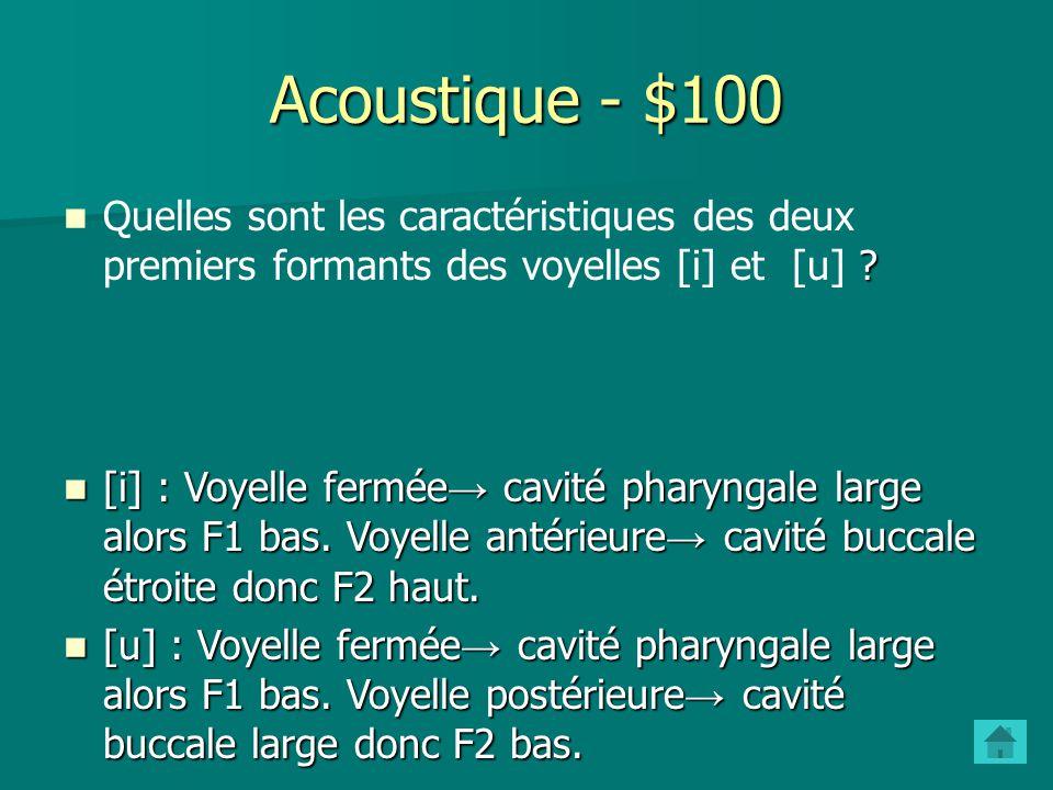 - $500 Phonation - $500 Quelles sont les différentes positions des cordes vocales pour la parole et à quels types de sons sont-elles associées? Fermem