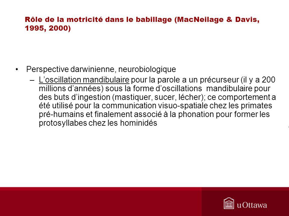 Rôle de la motricité dans le babillage (MacNeilage & Davis, 1995, 2000) Perspective darwinienne, neurobiologique –Loscillation mandibulaire pour la pa
