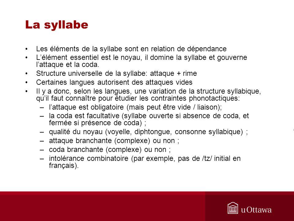 La syllabe Les éléments de la syllabe sont en relation de dépendance Lélément essentiel est le noyau, il domine la syllabe et gouverne lattaque et la