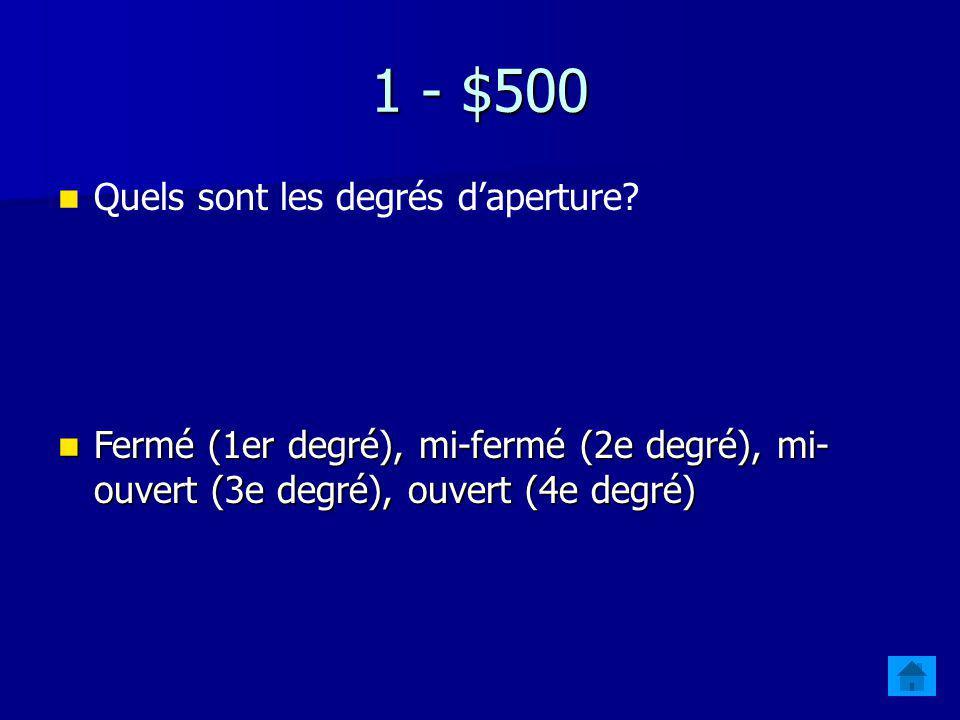 1 - $400 Quel paramètre articulatoire se rapporte à la position des lèvres? Larrondissement (la labialisation) Larrondissement (la labialisation)