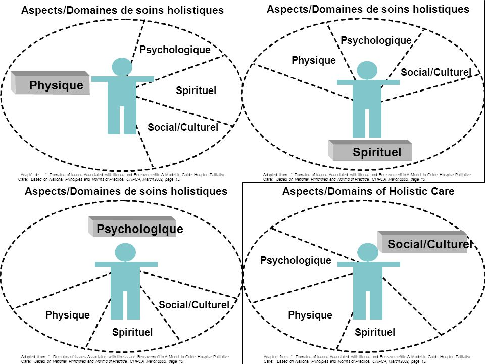 Aspects/Domains of Holistic Care Adapted from:Domains of Issues Associated with Illness and Bereavementin A Model to Guide Hospice Palliative Care:Bas