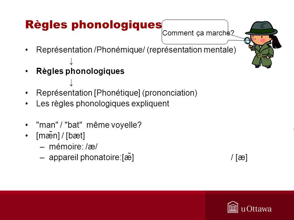 Règles phonologiques Représentation /Phonémique/ (représentation mentale) Règles phonologiques Représentation [Phonétique] (prononciation) Les règles phonologiques expliquent man / bat même voyelle.