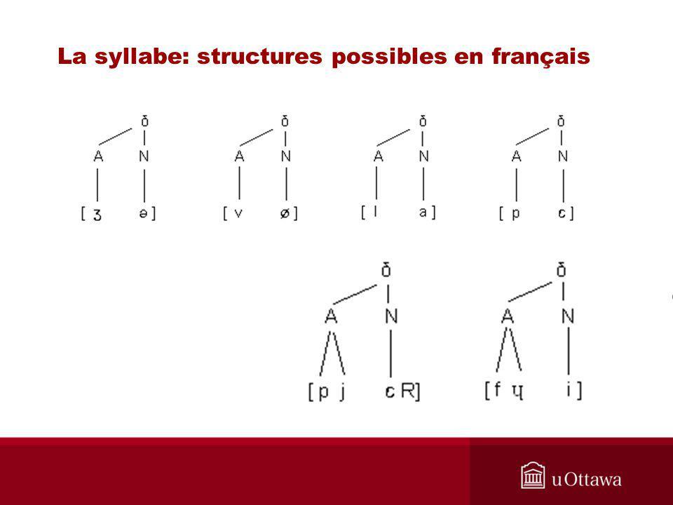 Structure syllabique du français La syllabe: structures possibles en français