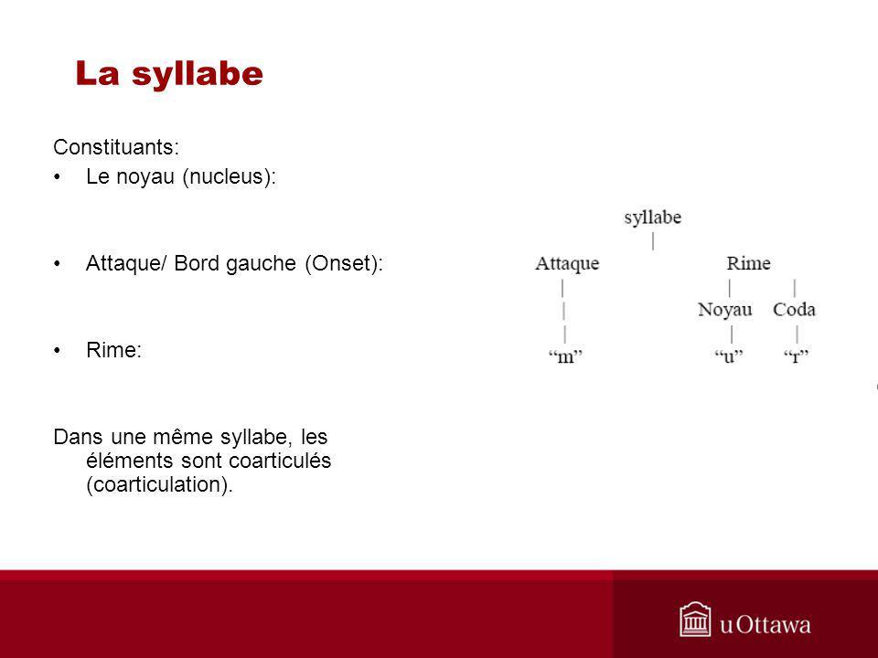 La syllabe Constituants: Le noyau (nucleus): Attaque/ Bord gauche (Onset): Rime: Dans une même syllabe, les éléments sont coarticulés (coarticulation)