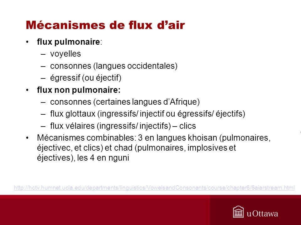 Mécanismes de flux dair flux pulmonaire: –voyelles –consonnes (langues occidentales) –égressif (ou éjectif) flux non pulmonaire: –consonnes (certaines