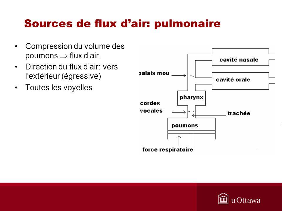 Sources de flux dair: pulmonaire Compression du volume des poumons flux dair. Direction du flux dair: vers lextérieur (égressive) Toutes les voyelles