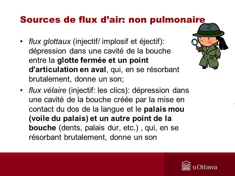 flux glottaux (injectif/ implosif et éjectif): dépression dans une cavité de la bouche entre la glotte fermée et un point d'articulation en aval, qui,