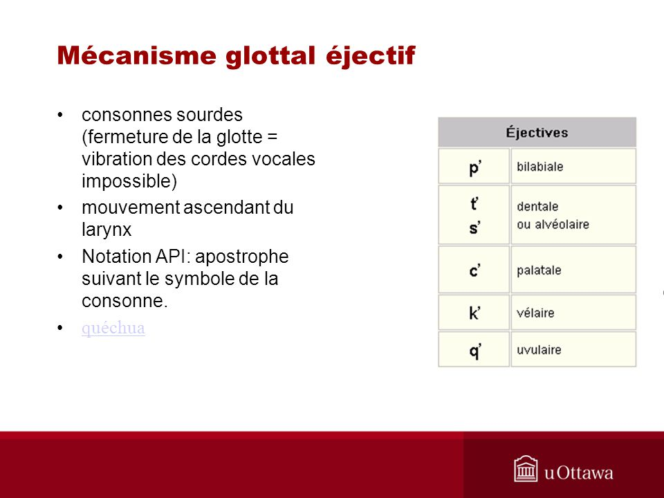 consonnes sourdes (fermeture de la glotte = vibration des cordes vocales impossible) mouvement ascendant du larynx Notation API: apostrophe suivant le
