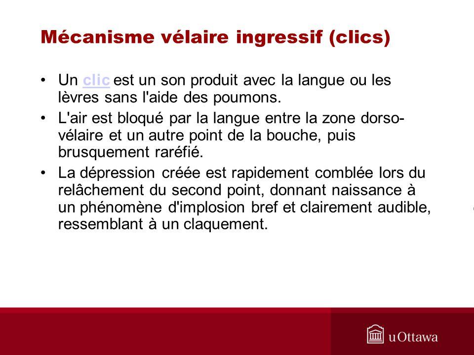 Mécanisme vélaire ingressif (clics) Un clic est un son produit avec la langue ou les lèvres sans l'aide des poumons.clic L'air est bloqué par la langu