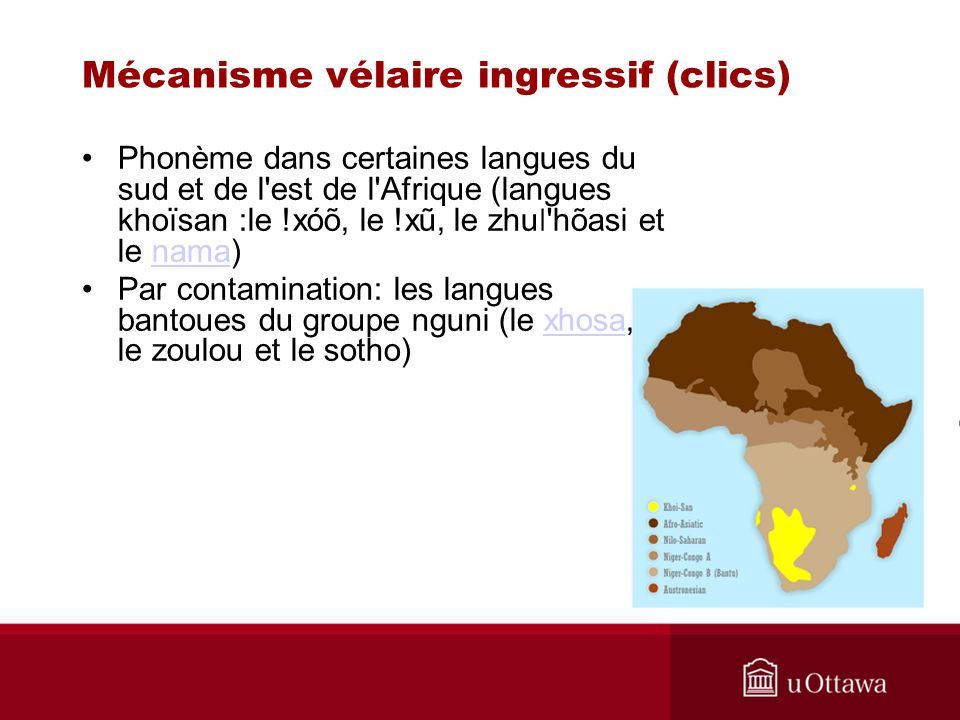 Phonème dans certaines langues du sud et de l'est de l'Afrique (langues khoïsan :le !xóõ, le !xũ, le zhu ǀ 'hõasi et le nama)nama Par contamination: l