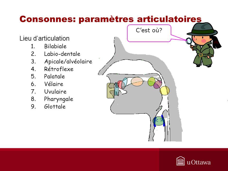 Lieu darticulation 1.Bilabiale 2.Labio-dentale 3.Apicale/alvéolaire 4.Rétroflexe 5.Palatale 6.Vélaire 7.Uvulaire 8.Pharyngale 9.Glottale Consonnes: pa