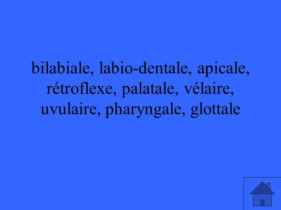 bilabiale, labio-dentale, apicale, rétroflexe, palatale, vélaire, uvulaire, pharyngale, glottale