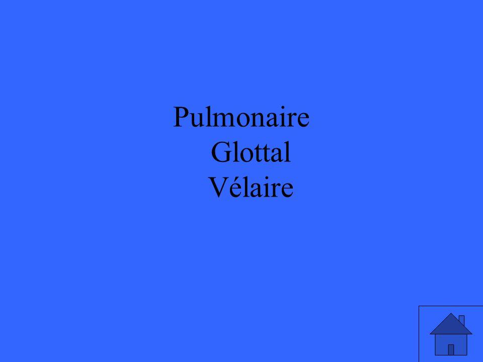 Pulmonaire Glottal Vélaire