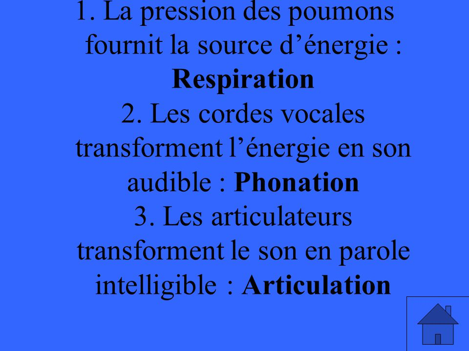1.La pression des poumons fournit la source dénergie : Respiration 2.
