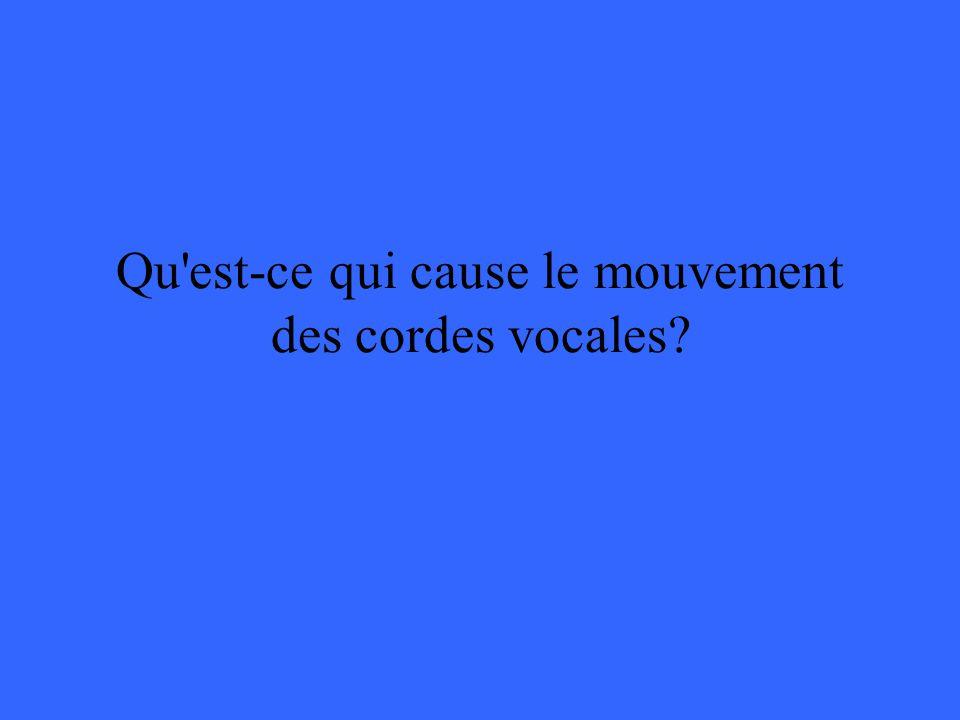 Qu est-ce qui cause le mouvement des cordes vocales?