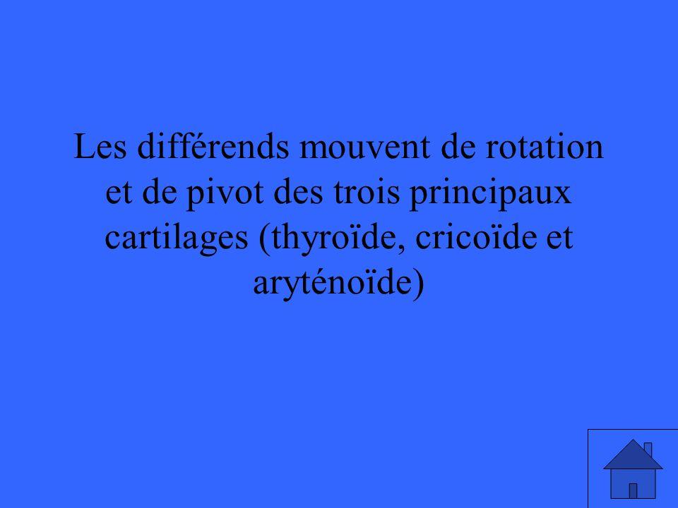 Les différends mouvent de rotation et de pivot des trois principaux cartilages (thyroïde, cricoïde et aryténoïde)