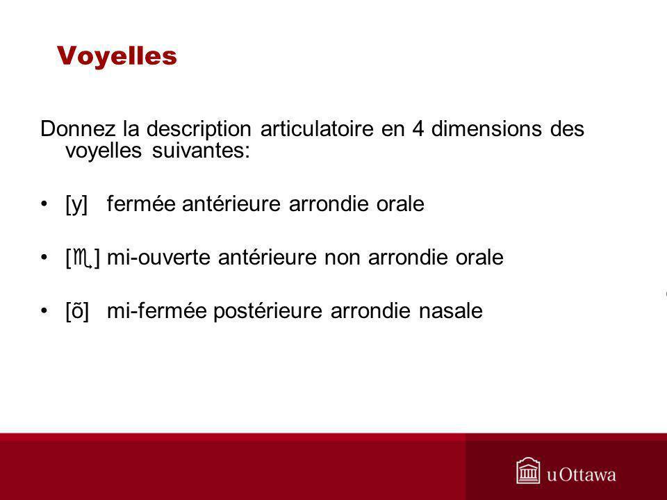 Voyelles Donnez la description articulatoire en 4 dimensions des voyelles suivantes: [y]fermée antérieure arrondie orale [ ] mi-ouverte antérieure non arrondie orale [õ]mi-fermée postérieure arrondie nasale
