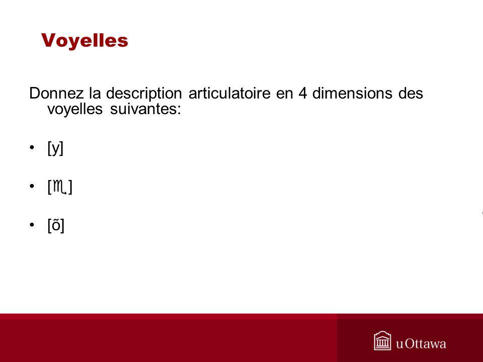 Voyelles Donnez la description articulatoire en 4 dimensions des voyelles suivantes: [y] [ ] [õ]